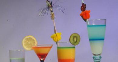 1001 idées d'apéros, de cocktails et des recettes d'apéritifs dinatoires